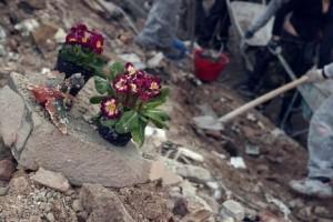 terremoto-macerie-fiori-300x200