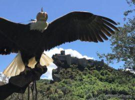 Roccascalegna, il castello sospeso nel cielo – Il video