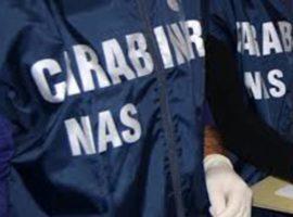 Abruzzo, controlli Nas su filiera del latte: sequestri per 430 kg